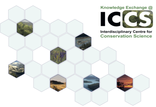 1 KE at ICCS header image